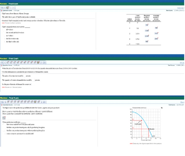 ECON 312N Week 8 Final Exam - Instant Download